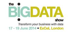 bigdata_logo